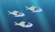 Fishmobile.02