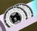 Sloth Bear Discs