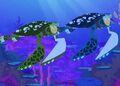 Sea Turtle Powers