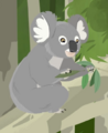 Koala AN