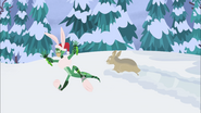 Hare Lizard Chris