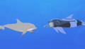 Dolphin.wildkratts.0016