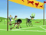 The Amazing Creature Race
