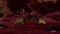 Hercules Beetles