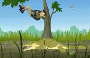 Chris on Tree