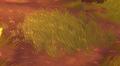 Large Algoroc Grass Patch.png