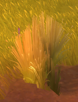 Sheared Algoroc Grass.png