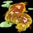 Escarsnoglug