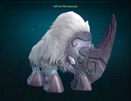 White Mammodin pet