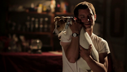 Wilfred 1x08 01.png