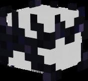 Endmaster's Helmet
