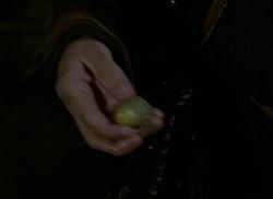 Magic acorn.png