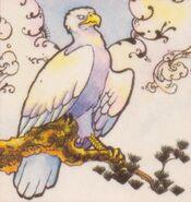 TWB Eagle