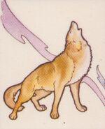 TWB Wolf