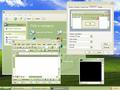 Windows XP Olive Green