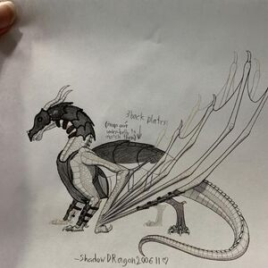 Skywing Armour Wing Of Fire Roblox Wiki Fandom Dragon armor drawing zeichnung rstung drache fantasy traditionalart draco draconigen. skywing armour wing of fire roblox