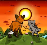 Fox and cat subway