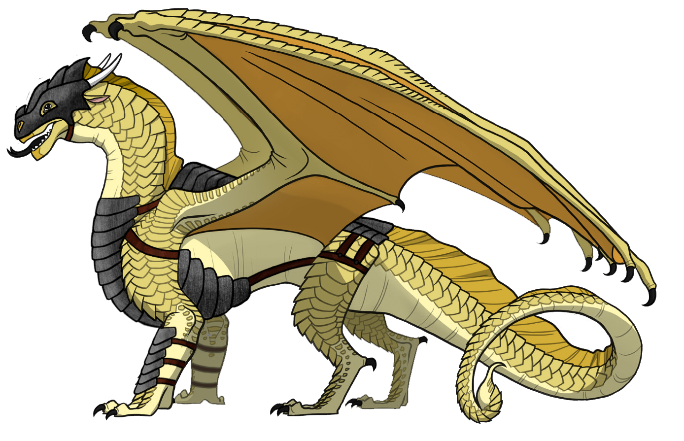 User Blog Whispering Death Dragon Armor Sets Wings Of Fire Wiki Fandom Drag and drop scars, ears, and horns! whispering death dragon armor sets