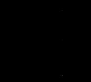 GSandWing-transparent