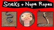 Nope Ropes, Sneks, & Danger Noodles-0