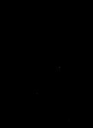 GSeaWing-transparent-noFish