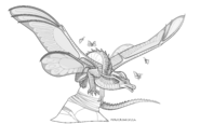 SilkWing Variant