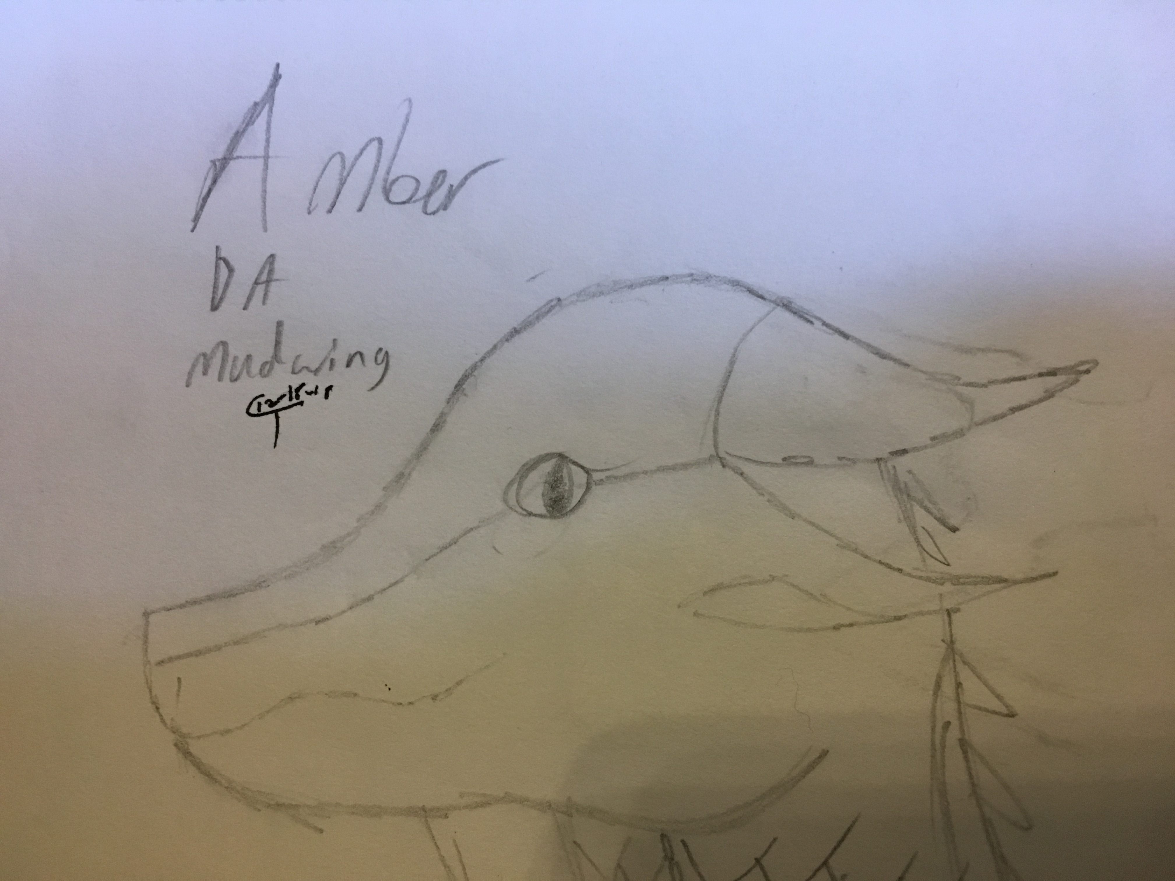 Amber (ADM)