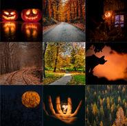 AutumnMB