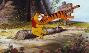 Winnie the Pooh got bounced by Tigger again