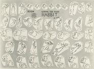 Rabbit model sheet