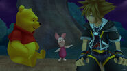 Pooh, Piglet, and Sora