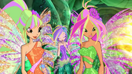 Flora's transperency is missing