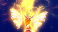 Light of sirenix 516