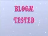 Testul lui Bloom