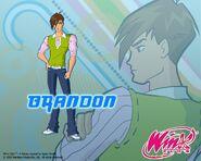 Brandon S4 Casual