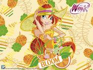BloomFruttiWallpaper