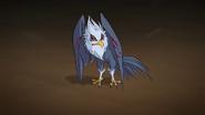 Kalshara Raubvogel