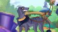 Kalshara Hund