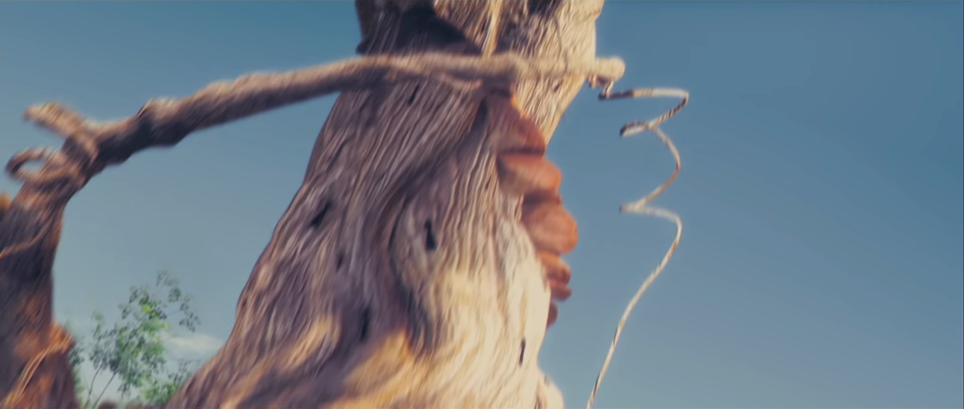 Baum der Portale
