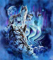 Амарок (волк).jpg