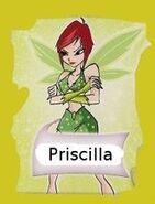 Присцилла-3