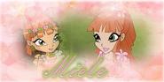 Miele winx banner by winxdigitalclubworld-d82kgds