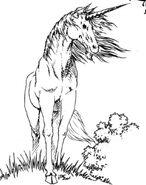 Unicorn RPG