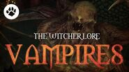What are Vampires? The Witcher 3 Lore - Vampires