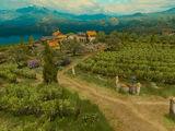 Belgaard Vineyard