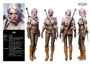 Ciri Witcher 3 The Wild Hunt Character Sheet