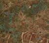 Tw3 map crookback bog 02.png