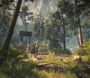 Tw2 loc muinne forest 01