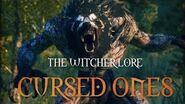 What are Cursed ones? The Witcher 3 Lore - Cursed Ones
