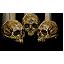 Grave hag skull